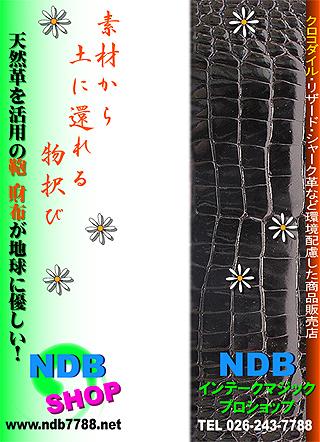 NDB・吊革広告A