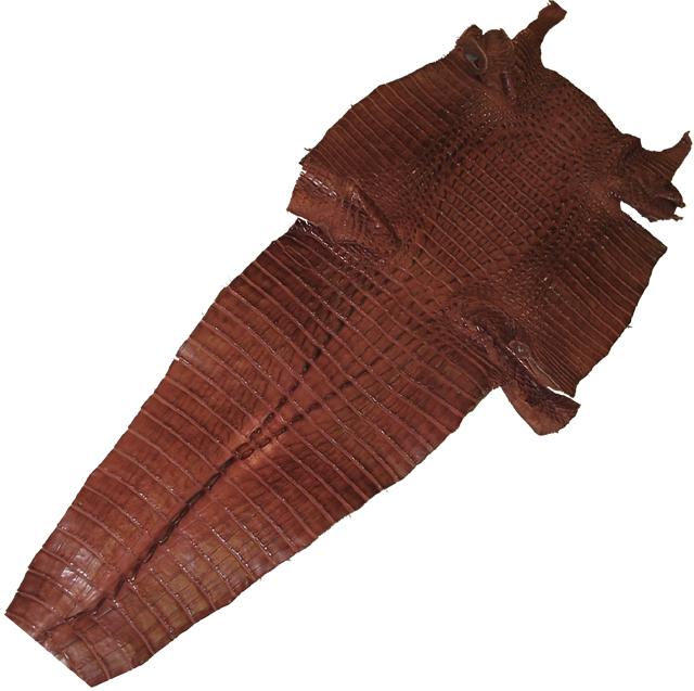 ワニ革原皮