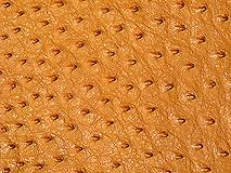 オーストリッチ革原皮