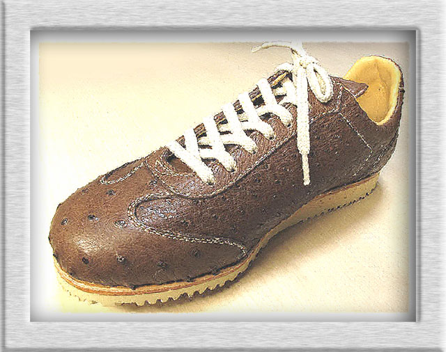 オーストリッチ靴